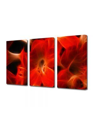 Set Tablouri Multicanvas 3 Piese Abstract Decorativ Floare abstracta