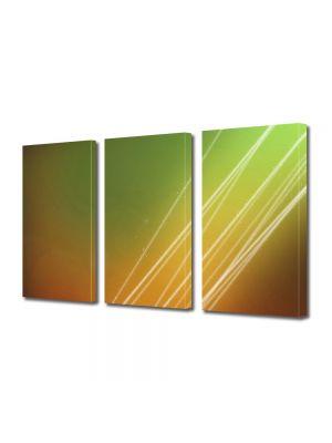 Set Tablouri Multicanvas 3 Piese Abstract Decorativ Raze fine