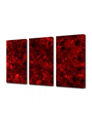 Set Tablouri Multicanvas 3 Piese Abstract Decorativ In Iad