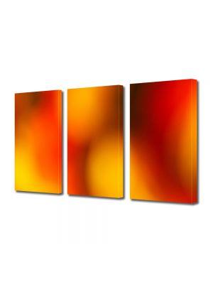 Set Tablouri Multicanvas 3 Piese Abstract Decorativ Caldura