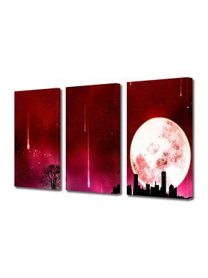 Set Tablouri Multicanvas 3 Piese Abstract Decorativ noapte rosie