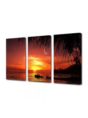 Set Tablouri Multicanvas 3 Piese Abstract Decorativ Apus exotic