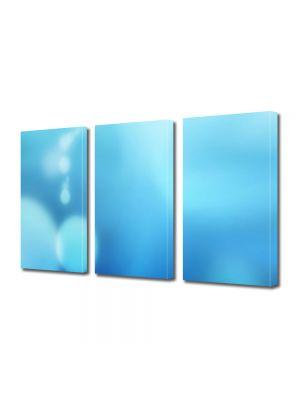 Set Tablouri Multicanvas 3 Piese Abstract Decorativ Cer senin