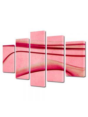 Set Tablouri Multicanvas 5 Piese Abstract Decorativ Roz abstract
