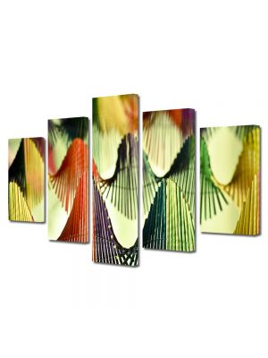 Set Tablouri Multicanvas 5 Piese Abstract Decorativ Corzi