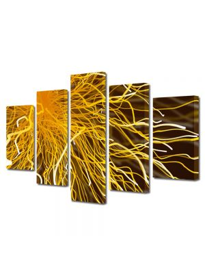 Set Tablouri Multicanvas 5 Piese Abstract Decorativ Tesla