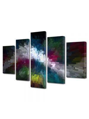 Set Tablouri Multicanvas 5 Piese Abstract Decorativ Distorsionat