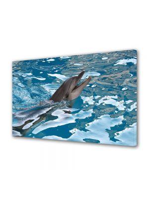 Tablou Canvas Luminos in intuneric VarioView LED Animale Delfin haios