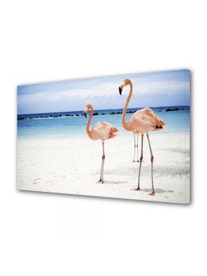 Tablou Canvas Animale Flamingo pe plaja