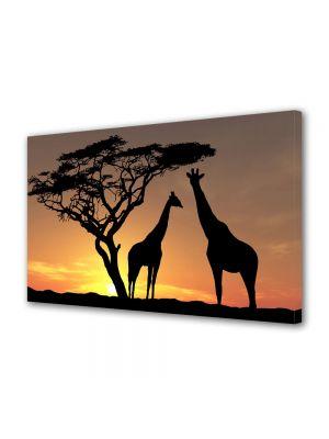 Tablou Canvas Luminos in intuneric VarioView LED Animale Girafe la apus