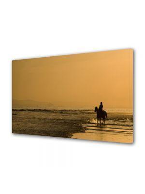 Tablou Canvas Animale Calare la apus pe plaja