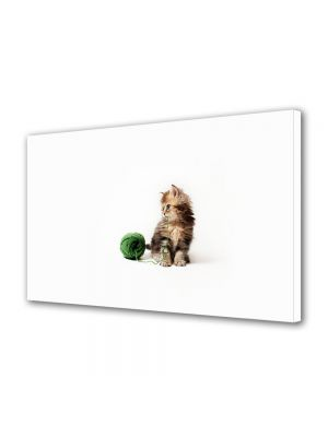 Tablou Canvas Animale Pisica jucausa