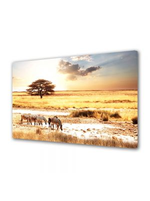 Tablou Canvas Animale Zebre in savana