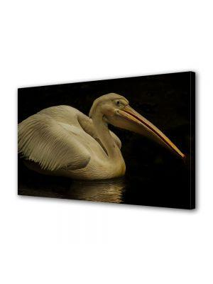 Tablou Canvas Luminos in intuneric VarioView LED Animale Pelican alb