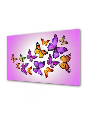 Tablou Canvas Luminos in intuneric VarioView LED Animale Colaj fluturi fundal violet