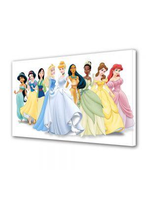 Tablou VarioView LED Animatie pentru copii Disney Printesa