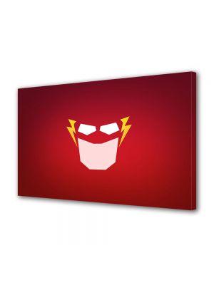 Tablou Canvas pentru Copii Animatie Flash