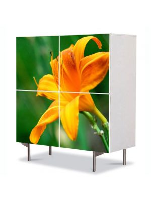 Comoda cu 4 Usi Art Work Flori Fir de liliac portocaliu, 84 x 84 cm