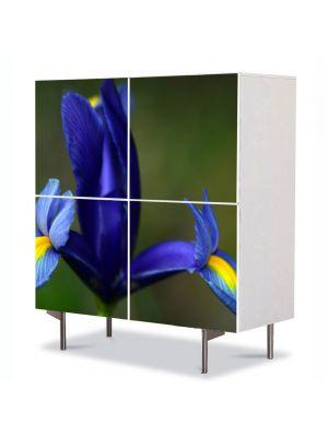 Comoda cu 4 Usi Art Work Flori Iris albastru, 84 x 84 cm