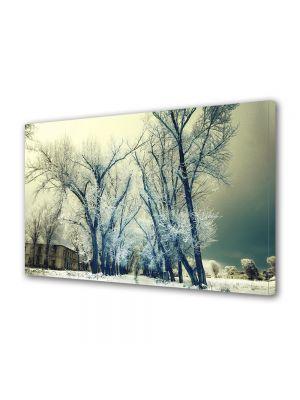 Tablou Canvas Iarna Zapada in copaci