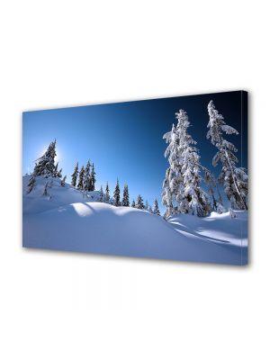 Tablou Canvas Iarna Peisaj de iarna