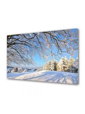 Tablou Canvas Iarna Umbra copacilor ninsi