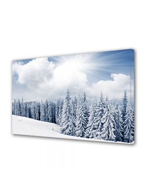 Tablou Canvas Iarna Conifere
