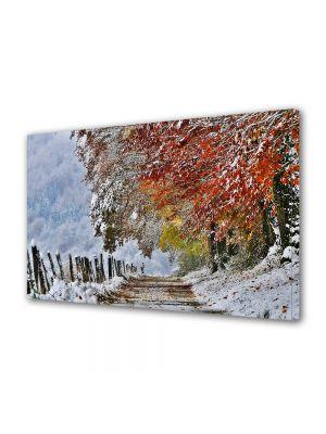 Tablou Canvas Iarna Drm brazdat de frunze