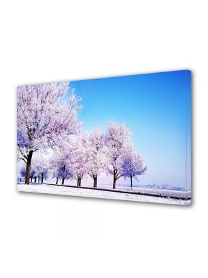 Tablou Canvas Iarna Copaci roz