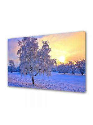 Tablou Canvas Iarna Copacul la apus