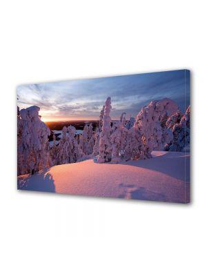 Tablou Canvas Iarna Apus