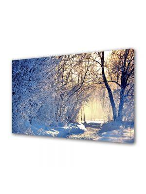 Tablou Canvas Iarna Cei doi copaci