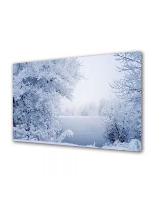 Tablou Canvas Iarna Gheata pe lac