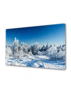 Tablou Canvas Iarna Alb si albastru
