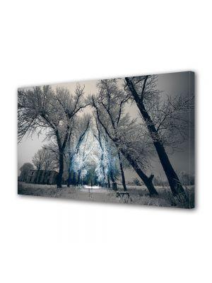 Tablou Canvas Iarna Drum de iarna