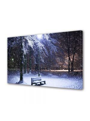 Tablou Canvas Iarna Iarna in parc