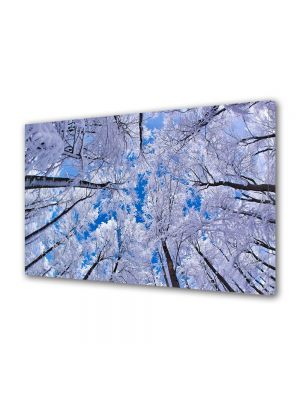 Tablou Canvas Iarna Cerul alb