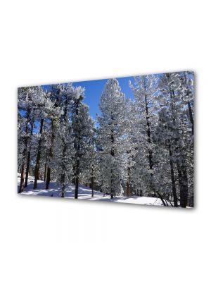 Tablou Canvas Iarna Peisaj inzapezit