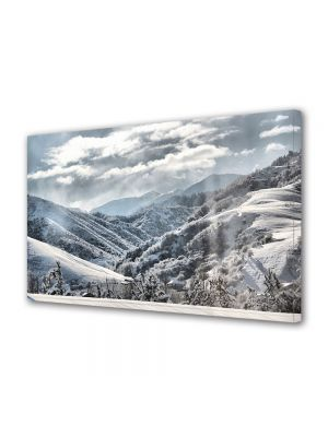 Tablou Canvas Iarna Peste mari si tari