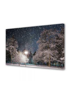 Tablou Canvas Iarna Ninge