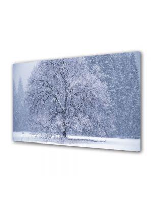 Tablou Canvas Iarna Ninge iarasi