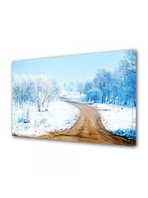 Tablou Canvas Iarna Carare pe deal