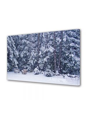 Tablou Canvas Iarna Dupa ninsoare