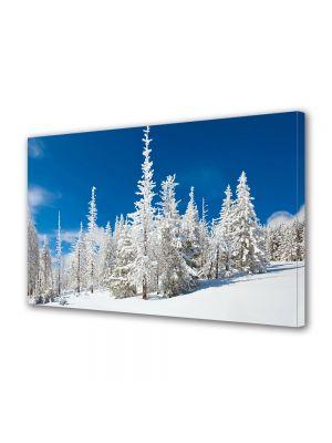 Tablou Canvas Iarna Brazi ninsi la munte