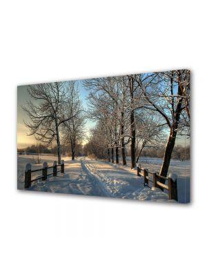 Tablou Canvas Iarna Poteca