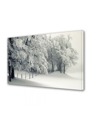 Tablou Canvas Iarna Alb alb