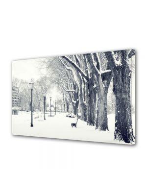 Tablou Canvas Iarna Iarna in parcul nins