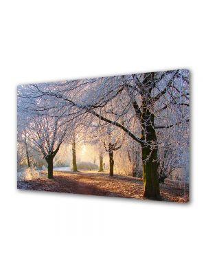 Tablou Canvas Iarna Apus in padure ninsa