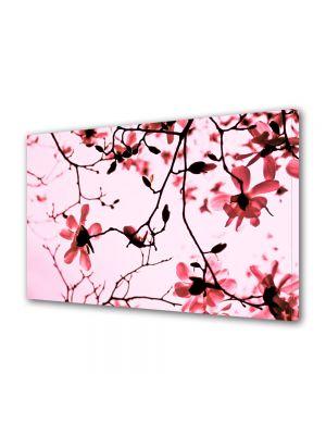 Tablou Canvas Flori Crengute de magnolie