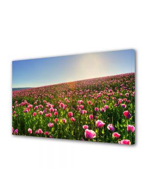 Tablou Canvas Flori Superb camp colorat cu flori